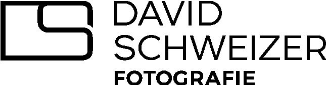 Logo David Schweizer Fotografie